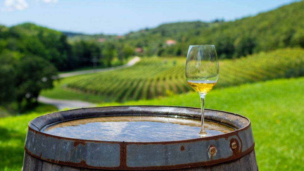 Premium Istrian wines