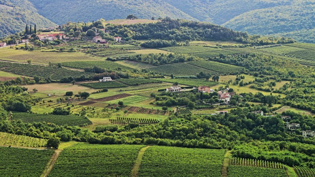 The magic of Central Istria